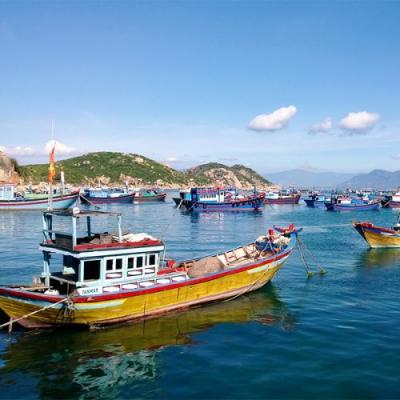 Tour Lý Sơn